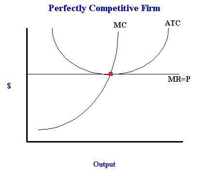 Short run profit max for a perfectly competitive firm