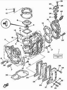 1995 Yamaha Cylinder Crankcase Parts For 25 Hp C25msht