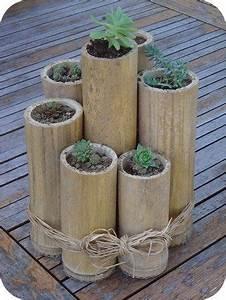 Deko Für Terrasse : bambus und kaktus f r die terrasse pflanzen deko f r die terasse basteln pinterest ~ Orissabook.com Haus und Dekorationen