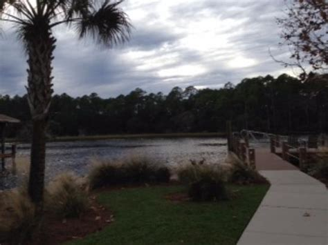 photojpg picture  palm valley fish camp ponte vedra