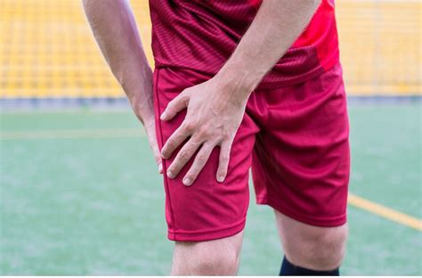 dolore interno coscia inguine sintomi di anca e coscia archivi fisioterapia rubiera