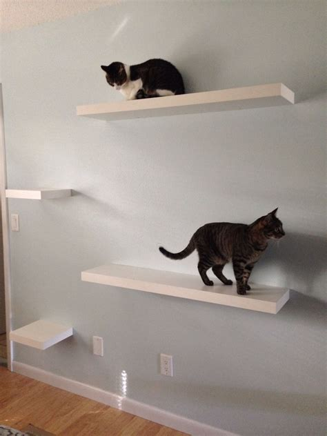 ikea   idea  cat shelves staggered ikea