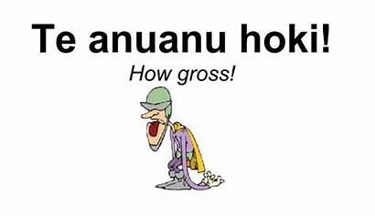 Phrases Cook Maori Uploaded