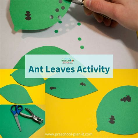 bugs and insects preschool theme 414 | bugs and insects ant leaves