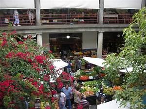 Hier Kann Man Das Geschlecht Berechnen : portugal reisebericht markt und tropical garden ~ Themetempest.com Abrechnung