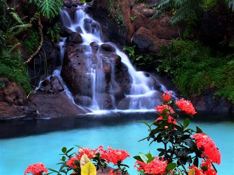 beautiful tropical waterfalls quotes quotesgram
