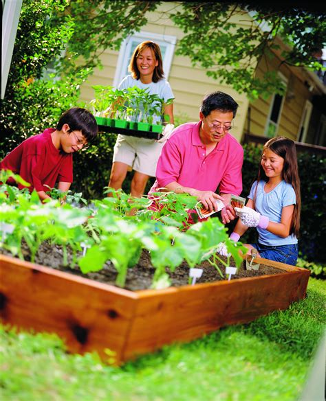 the of gardening continue the benefits of vegetable gardening into the fall