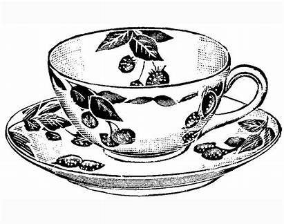 Tea Cup Coloring Pages Drawing Teacup Printable