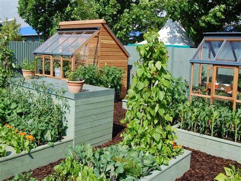 flowers for beginner gardeners flower garden plans for beginners best design ideas modern garden