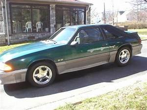 Ford Mustang Gt 5 0 : 1991 ford mustang gt 5 0 ~ Jslefanu.com Haus und Dekorationen