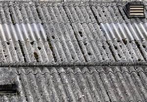 Renovation Toiture Fibro Ciment Amiante : prix depose plaque fibro ciment amiante ~ Nature-et-papiers.com Idées de Décoration