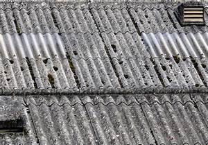 Plaque Fibro Ciment Brico Depot : depose plaque fibro ciment amiante maison design ~ Dailycaller-alerts.com Idées de Décoration
