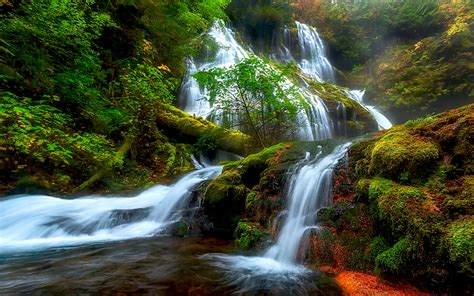 natural beauty panther creek falls columbia river district