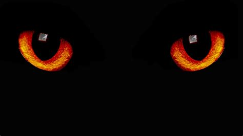 Orange Eye Wallpaper by Wallpapers 2560x1440 Black