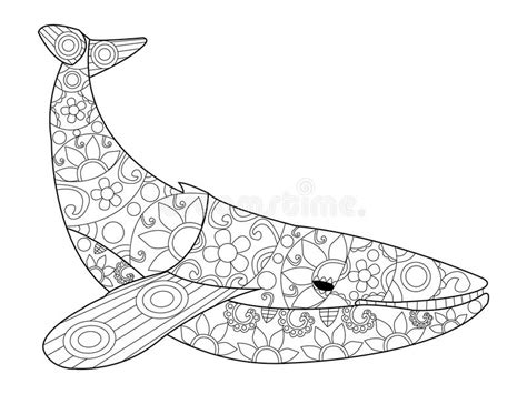 Whale Coloring Vector For Adults Stock Vector