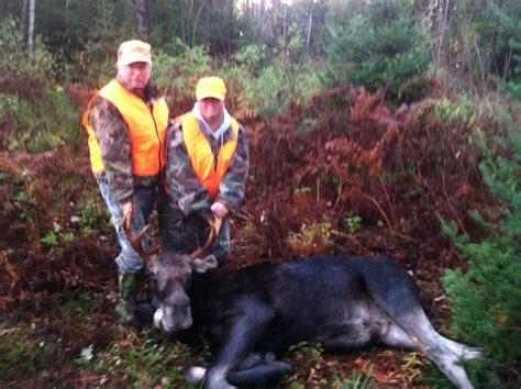 maine moose hunting  eastern ridge adventures