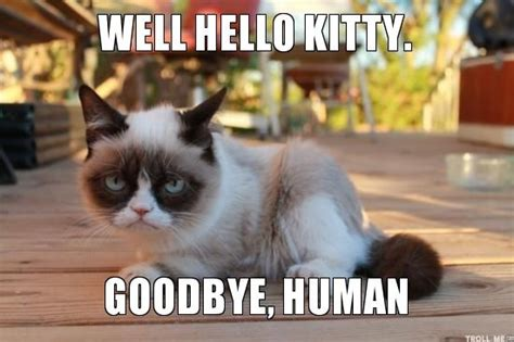 Goodbye Cat Meme - hello kitty j adore by nics sheen pinterest