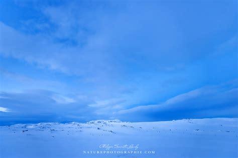 les reynisdrangar et la plage de vik en islande naturephotographie