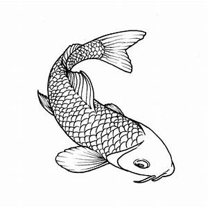 Drawing Koi art.unykness.com | koi | Pinterest | Koi art ...