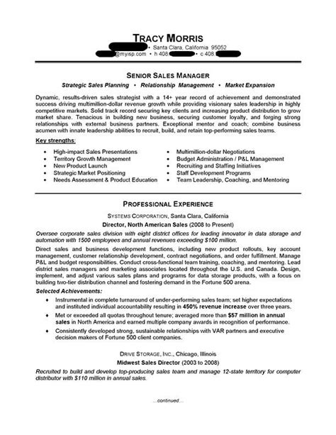 Professional Resume Sles by Sales Manager Sales Resume Sles Sales