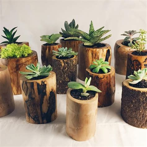 wooden succulent planter c hunt chunt co chicago wooden planters for