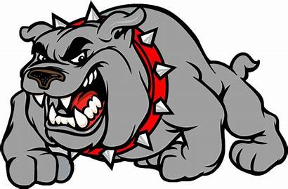 Bulldog Cartoon Background Bulldogs Clipart Transparent Clip