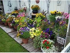 Container Gardens Ideas   Container Garden Ideas  Astounding Flower Pots