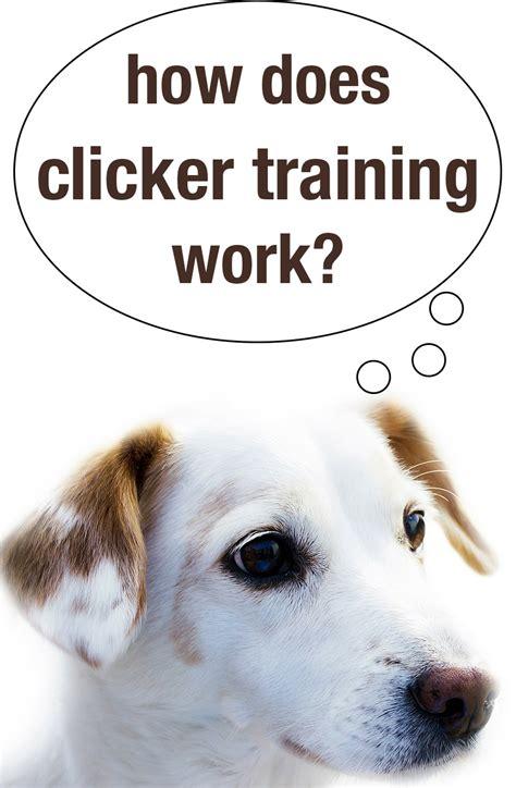 clicker training work  happy puppy site