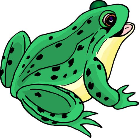 Frogs Clipart Frog Pictures Clip Cliparts Co