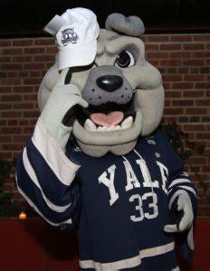 yale school colors yale courses mascot notable alumni