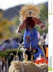 Happy Scarecrow  1 Stock Photography
