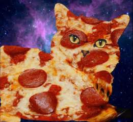 cat pizza pizza cat union productions