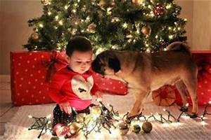 Christmas Card ideas Cute Baby and dog Christmas picture
