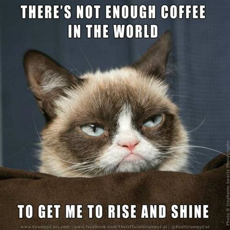 Grumpy Cat Good Morning Meme - grumpy cat on twitter quot there s not enough coffee in the world to get me to rise and shine