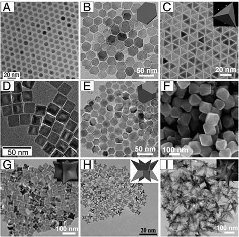 shape size  structure controlled synthesis  biocompatibility  iron oxide