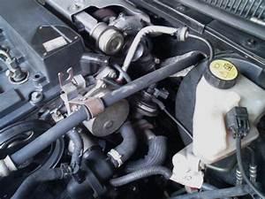 Electrovanne Ford Ka : avis sur modeo 115 ch di 2l ambiente de 2002 page 11 mondeo ford forum marques ~ Gottalentnigeria.com Avis de Voitures
