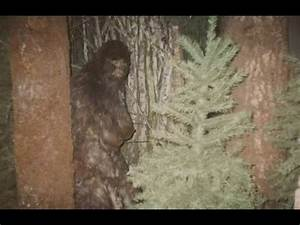 REAL FEMALE BIGFOOT CAUGHT ON CAMERA 2017!? BIGFOOT ...