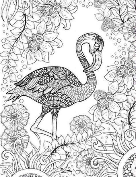 flamingo coloring page free printable coloring page of pink flamingo bird