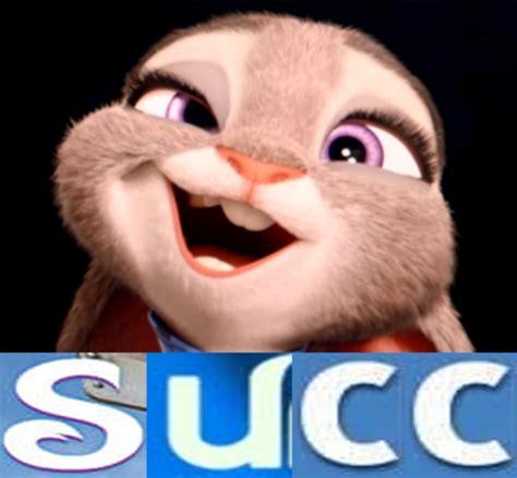 Succ Memes - succtopia judy edition succ know your meme