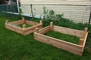 17 Best 1000 Ideas About Elevated Garden Beds On Pinterest