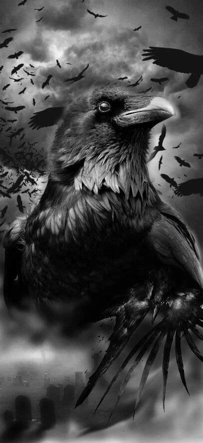Viking - Odin - Norse - Valhalla | kid projects | Tatuagem de corvo, Arte corvo, Ideias de tatuagens