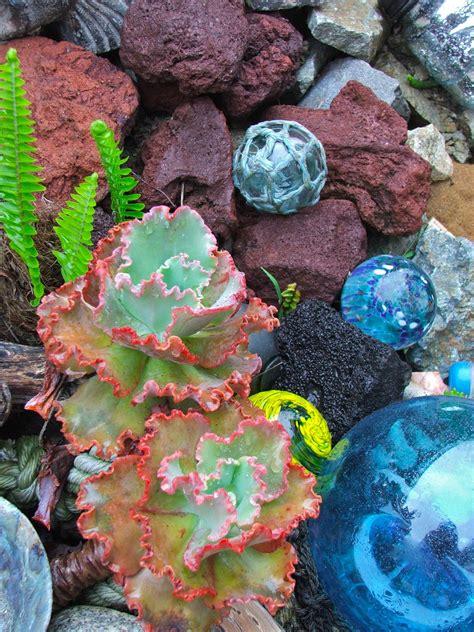 japanese glass floats     sea succulent garden