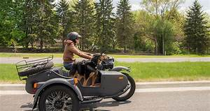 SLIDESHOW: Motorcycle Sidecars: More Uses Than You'd Think ...