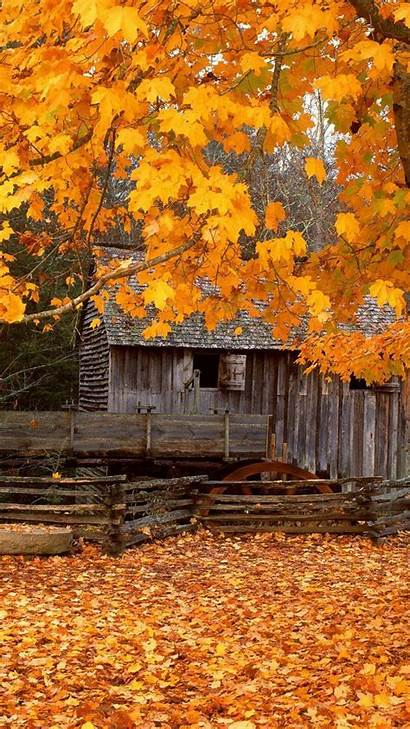 Fall Scenes Country Iphone Earth