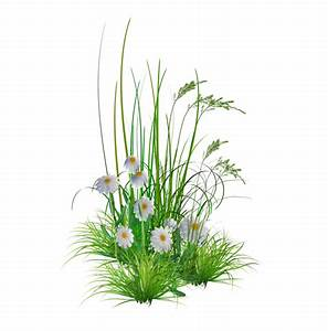 Green flower bed clipart png