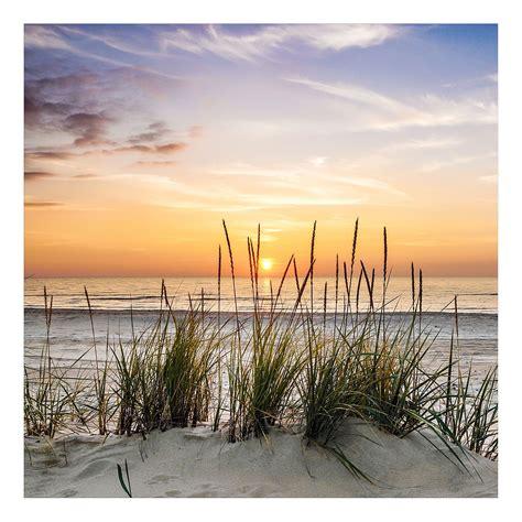 pro glasbilder bild lonely dune 20 pro jetzt bestellen unter https moebel ladendirekt de dekoration