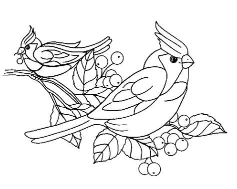 Kleurplaat Mees vogels kleurplaten mees