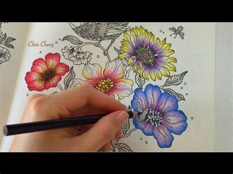 Coloring Flowers With Colored Pencils by Flower Coloring With Colored Pencils