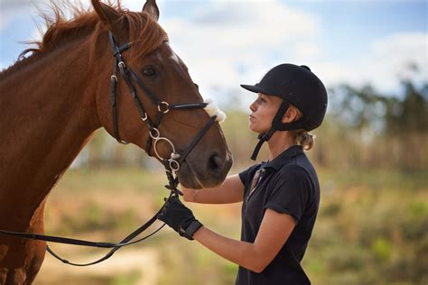horse breeds riders owners