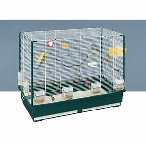 Guide Vert Oiseaux Cage
